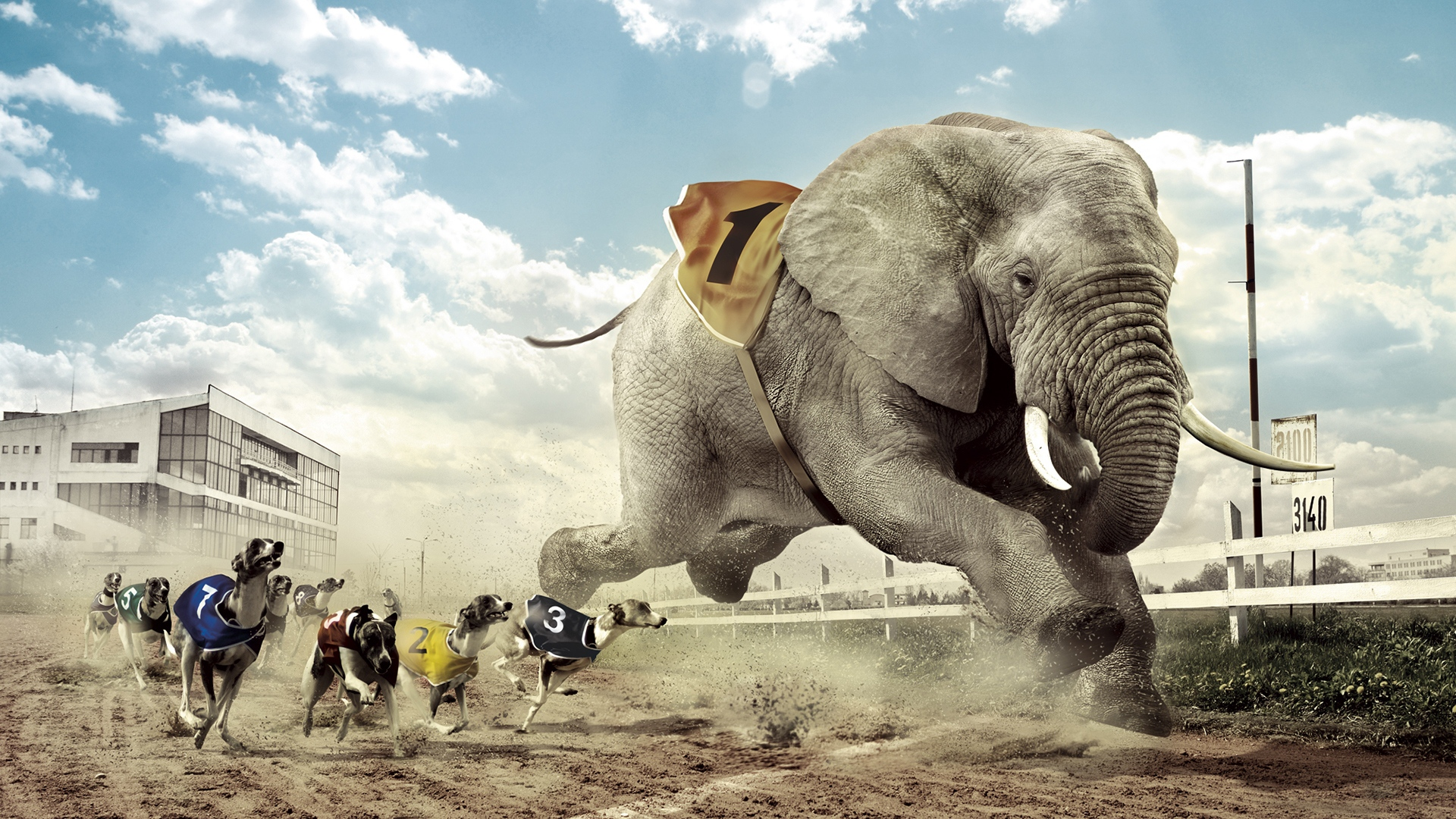 Bitcoin money transfer: competing with fast elephant
